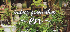 マサミガーデン、indoor green shop 〜en〜